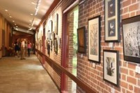 Meadowlakes-senior-art-show_crop